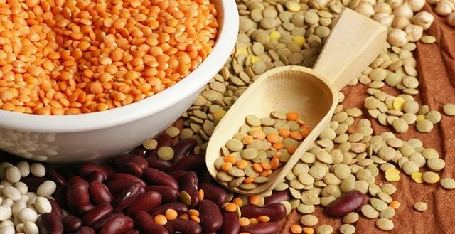آشنایی با 7 ماده غذایی سرشار از کلسیم که برای بدن مفید هستند