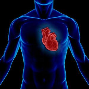 آیا قلب شما سالم است