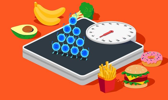 افزایش وزن و نقش 4 هورمون در این زمینه