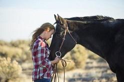 تاثیر اسب درمانی برای بیماریهای روانی