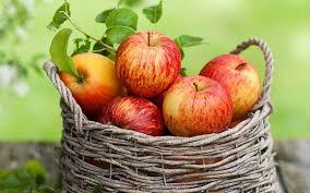 خوردن دانه سیب خطر مرگ را در پی دارد