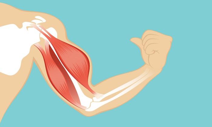 دانستنیهایی درباره ضعف عضلانی