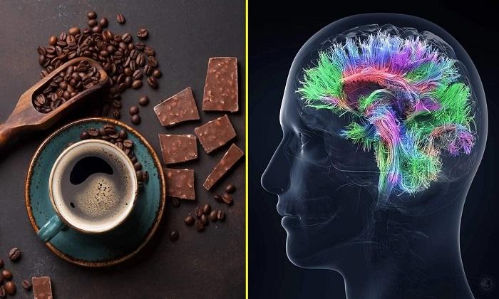 درباره ارتباط قهوه و شکلات با هوش انسان
