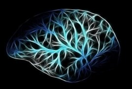 رمزگشایی مغز به منظور کمک به بیماران روانی