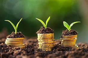شم اقتصادی چیست و چگونه می توان شم اقتصادی خود را بالا برد؟