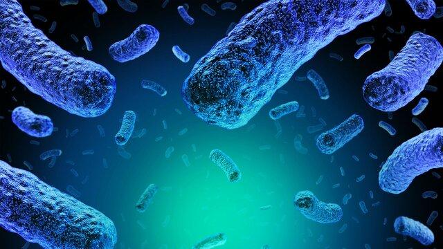 صدور هشدار بینالمللی برای شیوع بیماری لیستریا