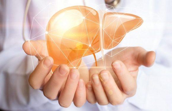 عاداتی که خطر بیماری کبد را کاهش میدهند