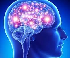 مغز و سیستم عصبی تحمل فشارخون بالا را ندارند