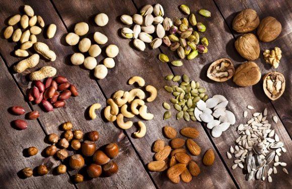 مغزهای خوراکی؛ گزینهای ایدهآل برای افزودن به رژیم غذایی