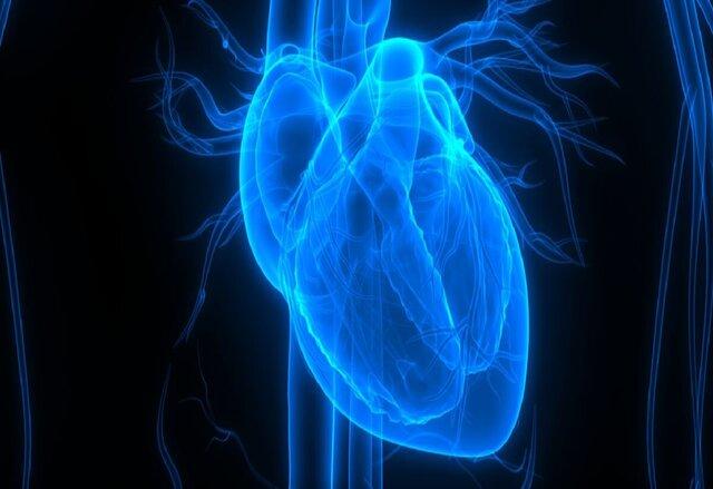 پروتئینی که آسیب ناشی از حمله قلبی را کاهش میدهد
