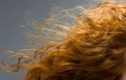 ۱۹ راز برای نگهداری از مو
